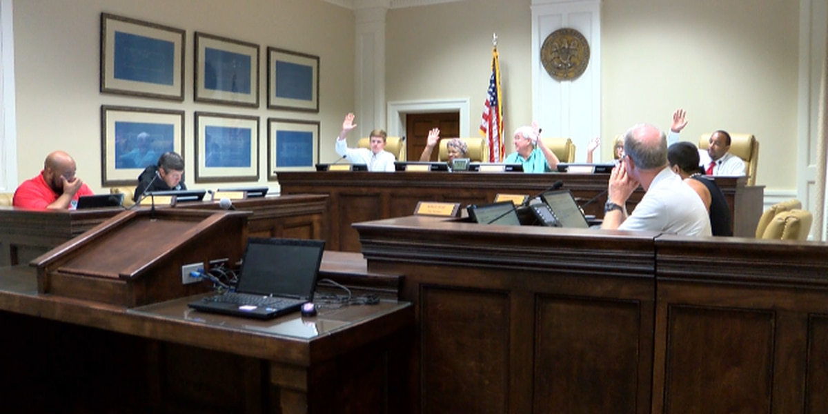 Hattiesburg City Council approves budget