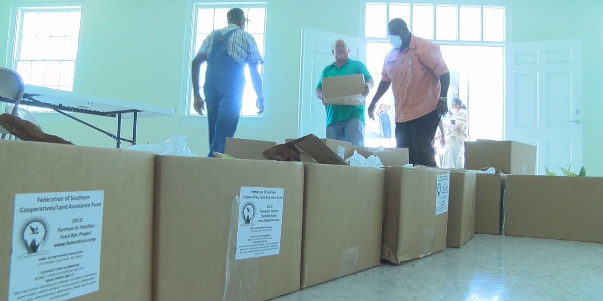 Covington Co. residents get USDA's Farmers to Families Food Boxes