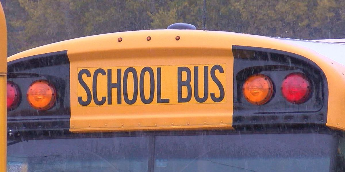 Call to action for drivers to pay more attention around school buses