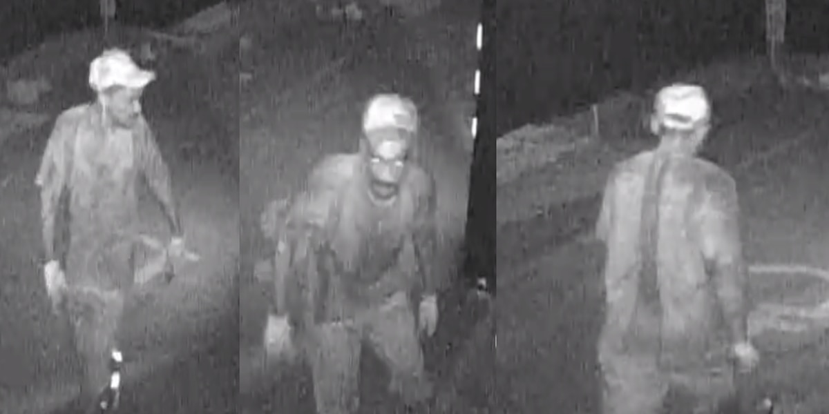 HPD searching for commercial burglary suspect