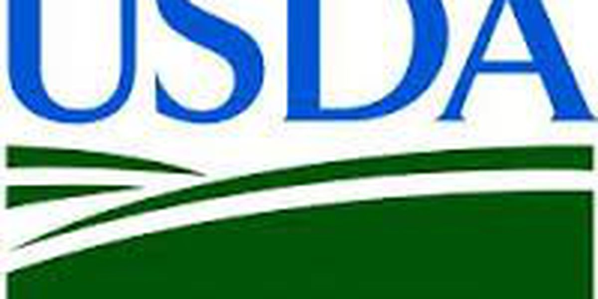 USDA announces funding for rural electric infrastructure projects