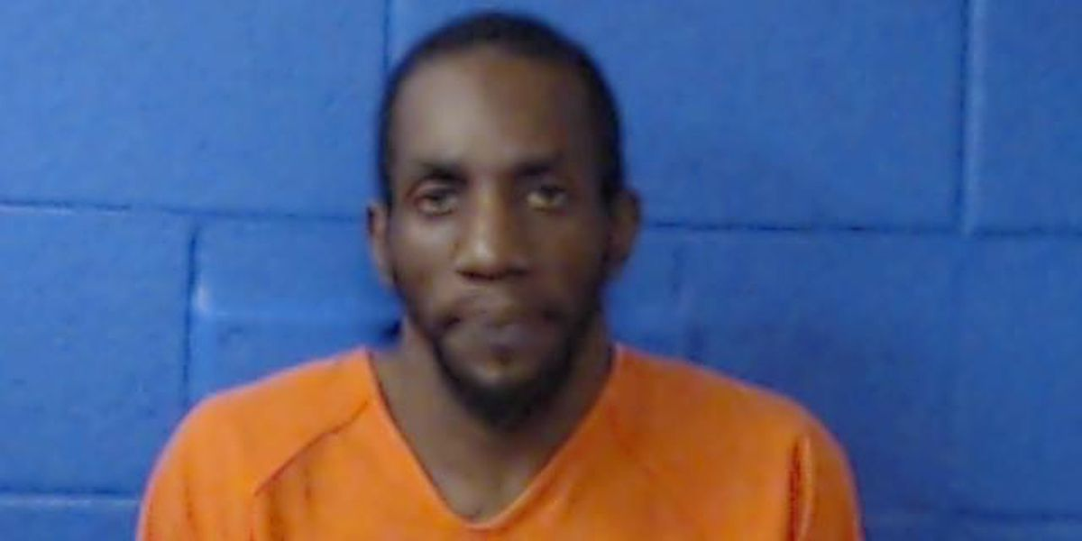 Lamar County bust lands 1 in jail, facing 20 felony charges