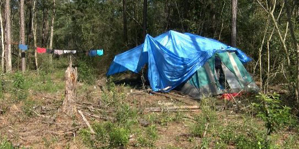 Homelessness: Life in the Woods