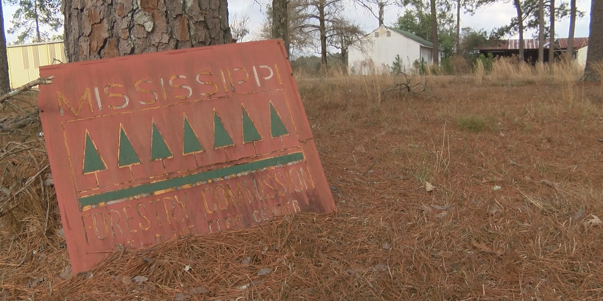 Covington County buying old Forestry Commission nursery