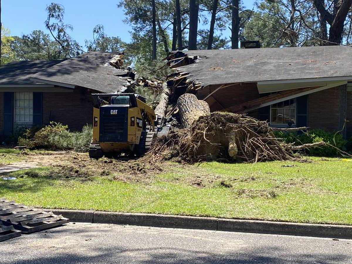 Columbia family survives tree splitting their house in two during storm