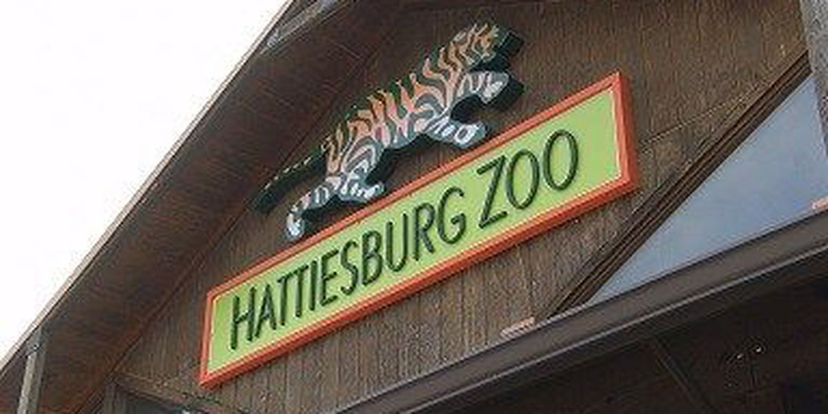 Hattiesburg zoo will have extended hours this summer