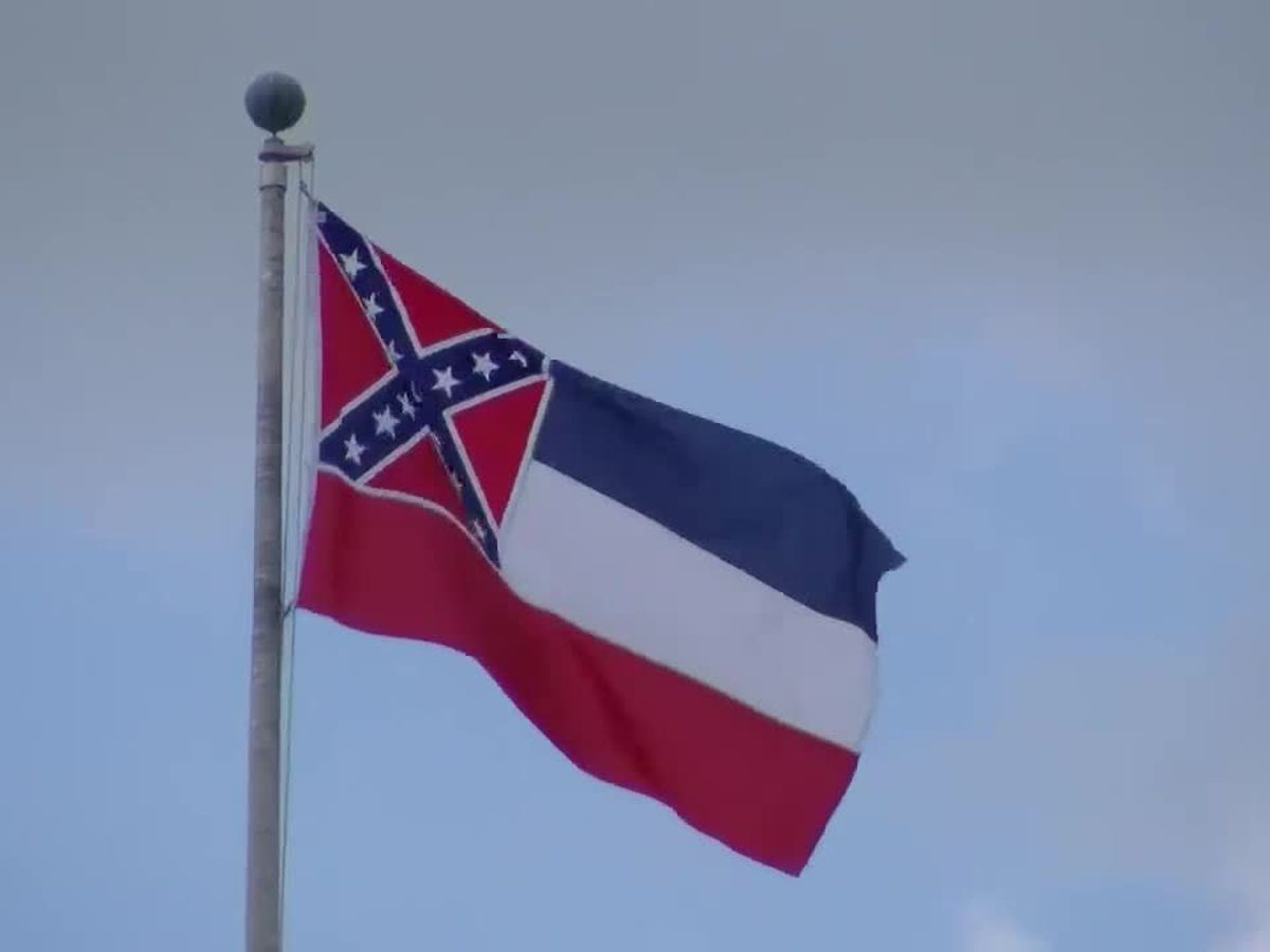 Some state senators calling for flag referendum