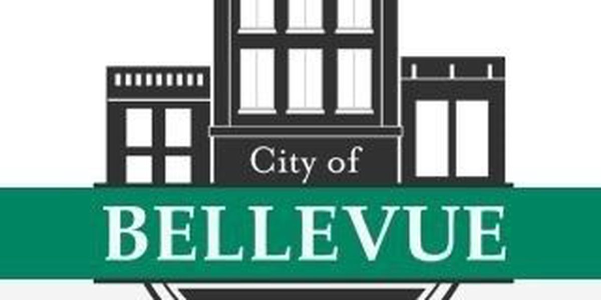 City of Bellevue formally begins incorporation process