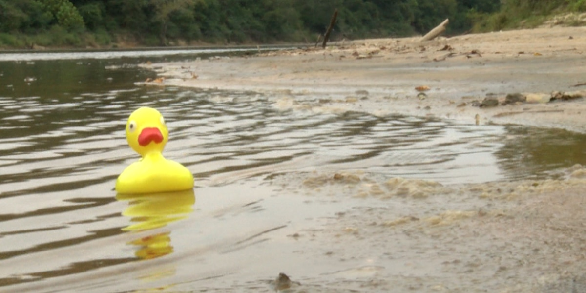 'Great American Duck Derby' set for Saturday morning