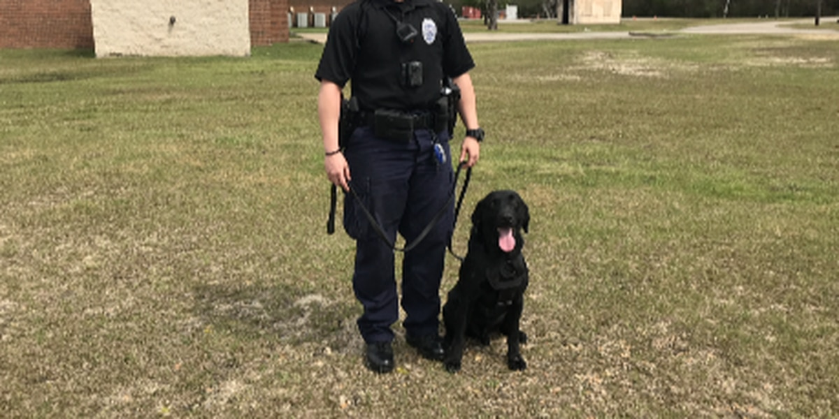 HPD officer makes history as department's first female K9 unit