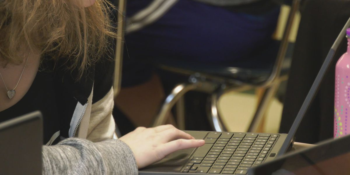 Back to School: Virtual vs. homeschooling