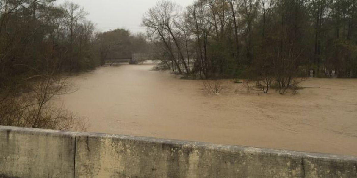 SLIDESHOW: Flooding in the Pine Belt