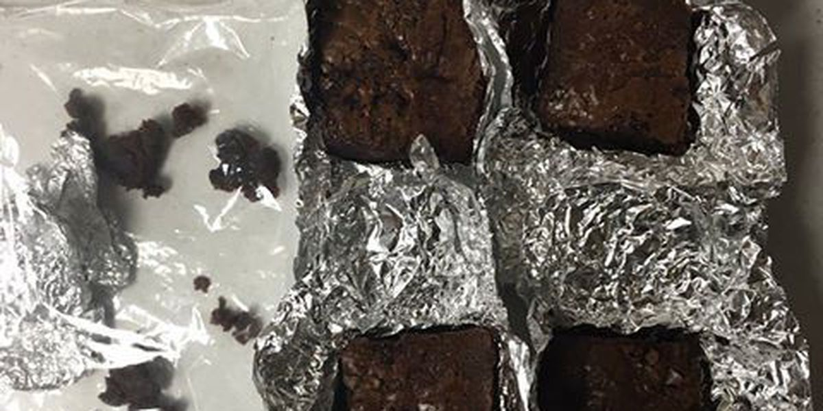 JCSD: 19-year-old arrested in pot brownie bust at West Jones