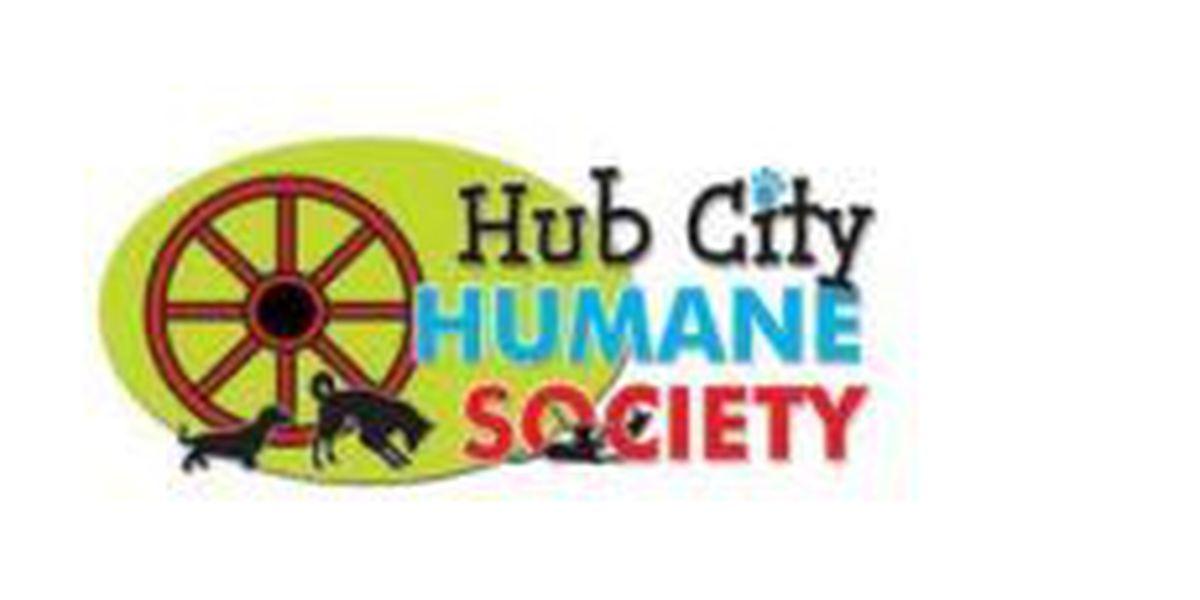 Animal shelter, property owners get EPA reuse award for old Davis Timber Superfund site