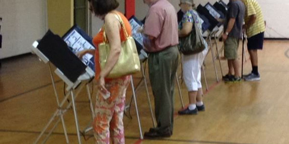 Early voter turnout steady for Pine Belt runoff elections