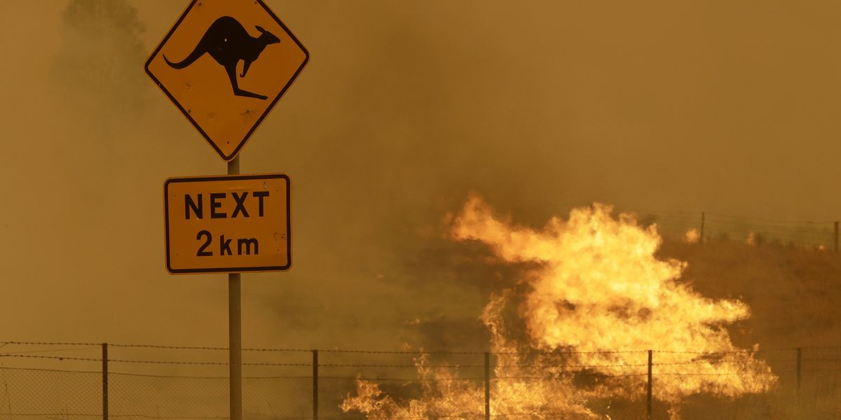 Australia wildfires probe recommends climate risk forecasts