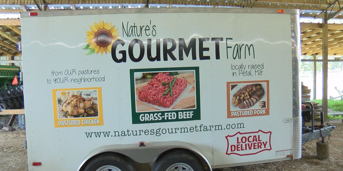 Nature's Gourmet Farm increasing output