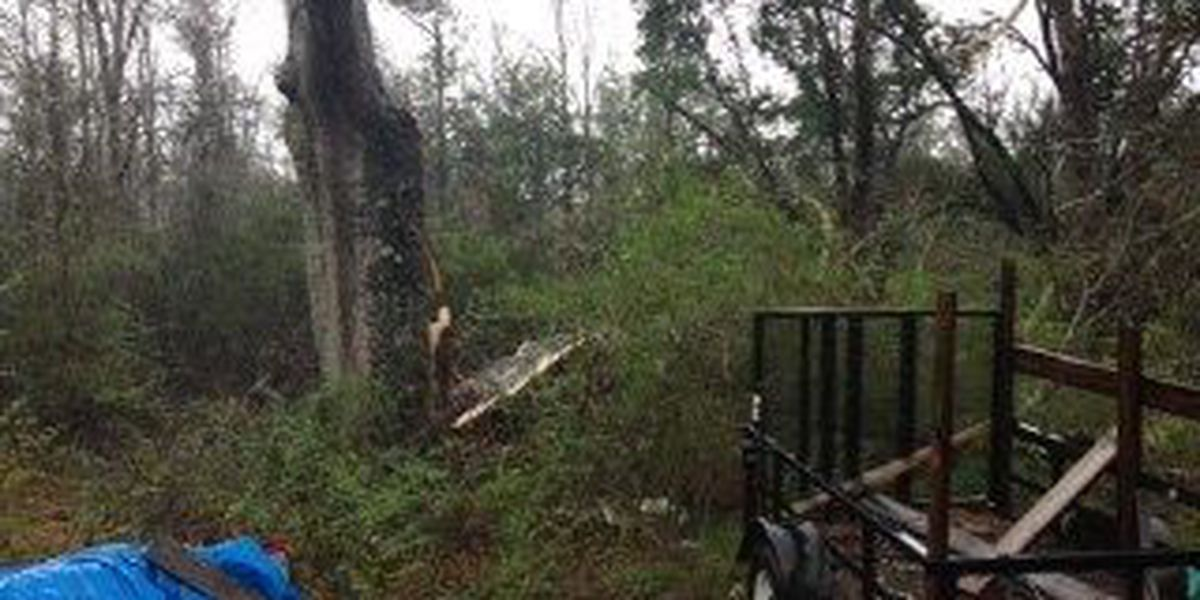 NWS confirms EF-1 tornado touched down in Purvis