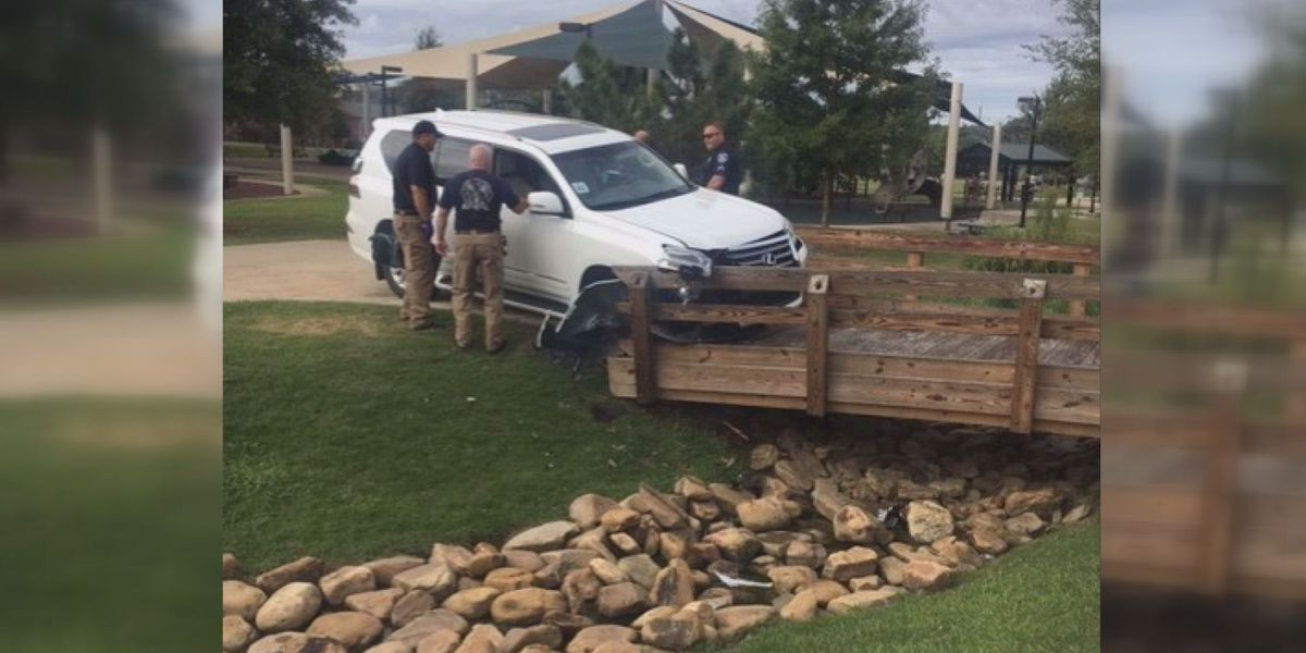 PICTURES: Drunk woman wearing only a towel drives Lexus into Flowood park, plows into bridge