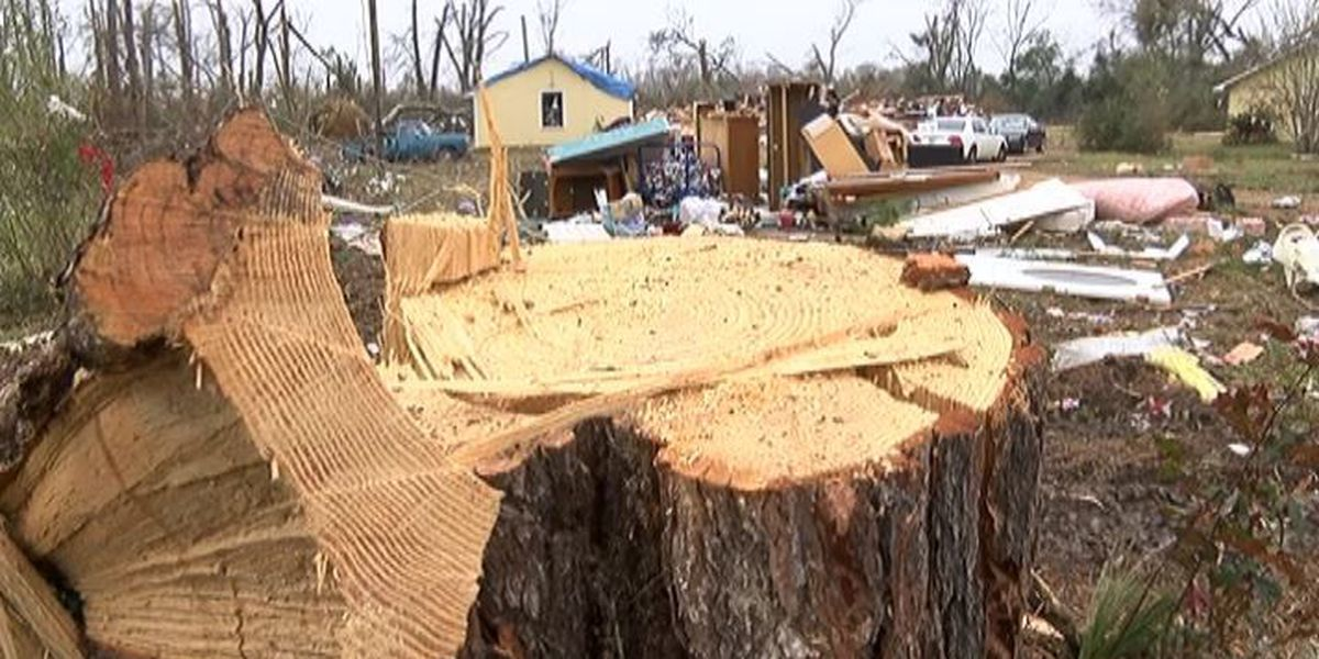 Home destroyed family remains hopeful