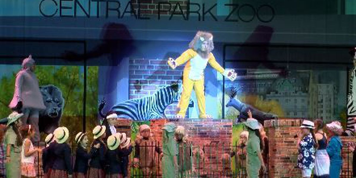 """StageStruck actors prepare for """"Madagascar A Musical Adventure"""""""