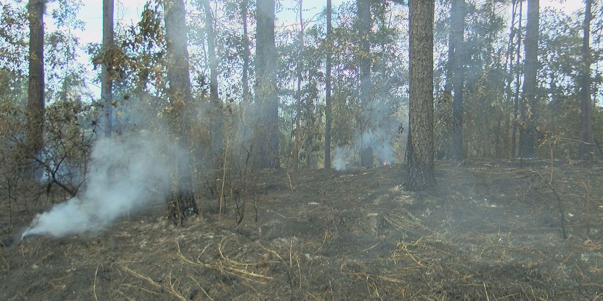 Statewide burn ban lifted; county burn bans remain