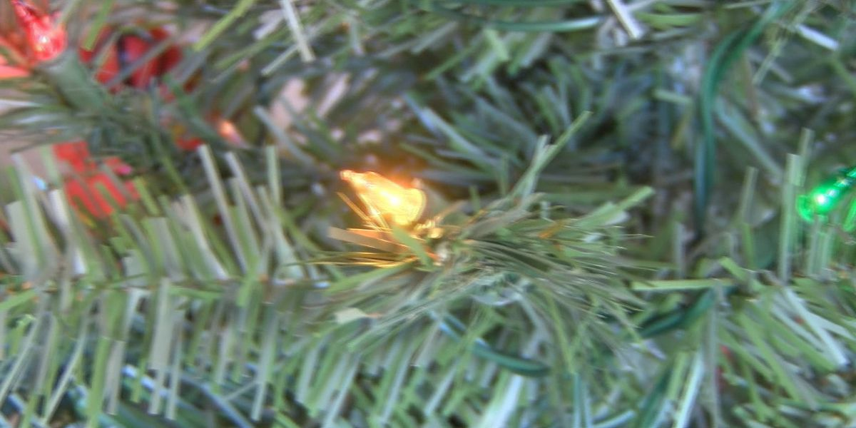 Tips for holiday lighting and tree safety