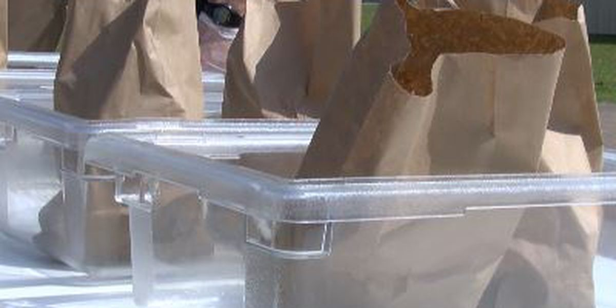 Lamar County School District feeds hundreds of students during closure