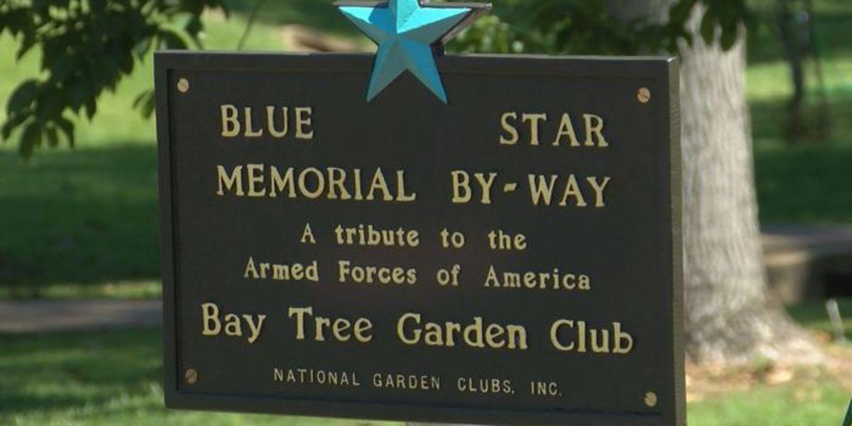 Blue Star Memorial dedicated in Bay Springs